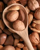 stock photo of pecan tree  - Fresh tree nuts and a wooden spoon - JPG