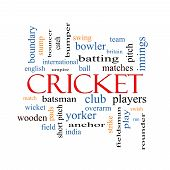 Cricket Word Cloud Concept