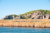 stock photo of dalyan  - Turkey mountains near the river - JPG