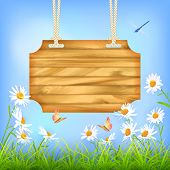 stock photo of summer insects  - Vector wooden sign board hanging on a rope - JPG