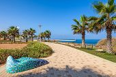 Paved promenade with palms and plants along shoreline of Mediterranean sea in Israel.
