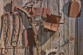foto of yesteryear  - A collection of antique rusted old garden and ranch tools hang in the sun on a weathered shed wall in an artistic collage - JPG