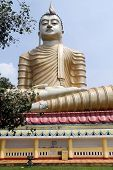 stock photo of vihara  - Big Buddha in buddhist Wewurukannala Vihara Sri Lanka - JPG