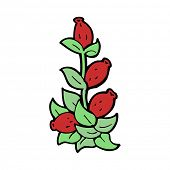 cartoon rosehip flowers