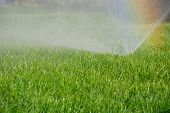 stock photo of swales  - sprinkler watering the green grass on a sunny summer day - JPG