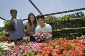 Family Shopping For Flowers In Plant Nursery