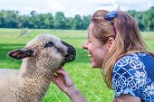 picture of lamb  - Caucasian woman and lamb heads and noses together in meadow - JPG