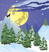 pic of wolf moon  - Night winter scene with the moon low in the sky - JPG