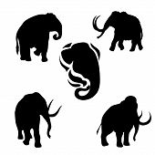 stock photo of animal silhouette  - Mammoth set of black silhouettes - JPG