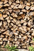 picture of firewood  - Dry firewood  - JPG