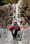pic of yaks  - Yaks and people on hanging suspension bridge on the way to Mount Everest base camp near Namche Bazar  - JPG