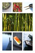 image of avocado tree  - Collage of various images of Asian and Japanese lifestyle - JPG