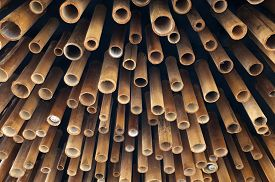 stock photo of bamboo  - Cutting bamboo, cross section of bamboo, ceiling