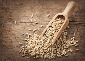 stock photo of oats  - Oat seeds in wooden spoons - JPG