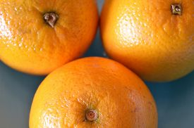 pic of valencia-orange  - 3 Valencia oranges extreme closeup against sky blue background - JPG
