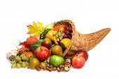 picture of cornucopia  - Cornucopia full of Fruits - JPG