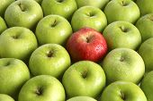 Постер, плакат: Фон из зеленых яблок с одной Красное яблоко