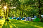 Tents Camping area, early morning, beautiful natural place with big trees and green grass, Europe poster