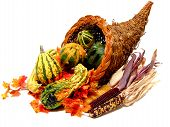 picture of cornucopia  - Thanksgiving or harvest cornucopia on a white background - JPG