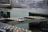 Industrial Line For The Production Of Biscuits And Bagels. Conveyor Belt For The Production Of Culin poster