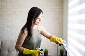 Lovely Woman Cleaning Window Blinds With Cloth And Liquid Spray During Day Time poster