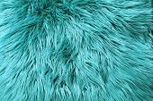 Blue Fur Background