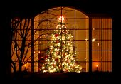 Welcome Home Christmas Tree In Window poster