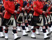 stock photo of bagpiper  - Kilted Bagpipe players Calgary Stampede Parade Calgary Alberta - JPG