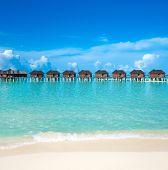 Sea Maldives. tropical Maldives island with beach. travel landscape poster
