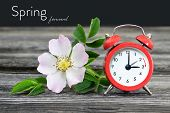 Spring Forward. Summer Time Change.daylight Saving Time poster