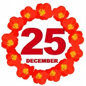 December 25 Icon. For Planning Important Day. Banner For Holidays And Special Days With Flowers. Twe poster