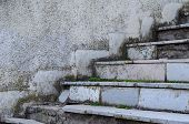 Old Marble Staircase Covered With Moss. Crumbling Staircase With Marble Slabs. Side View Of Empty St poster