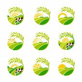Farm Isolated Green Logo Collection. Rural Landscape Logos Set. Environmental Signs. Set Of Vector D poster