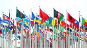 picture of flags world  - The flags of different countries in the World Expo in Shanghai - JPG
