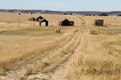 picture of shacks  - Unpaved road passing through shacks and leading to endless grassland in suburb - JPG