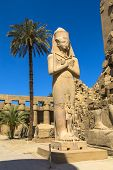 stock photo of ramses  - Ramses II enormous stone statue in peristyle courtyard in the Temple of Amun - JPG