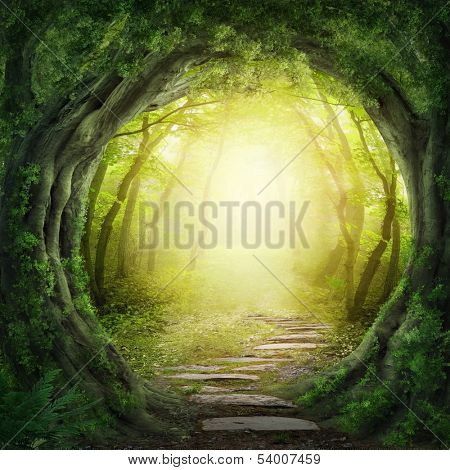 Road in magic dark forest poster