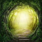 stock photo of greens  - Road in magic dark forest - JPG