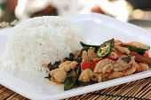 foto of gai  - fried basil chicken and rice  - JPG