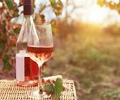 stock photo of bottles  - One glass and bottle of the rose wine in autumn vineyard - JPG