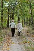 stock photo of birching  - Happy senior couple in autumn birch forest - JPG