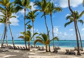 pic of beachfront  - Luxury resort beach in Punta Cana Dominican Republic - JPG