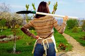 picture of ordinary woman  - Back view portrait of a woman with shovel in garden - JPG