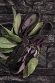 foto of purple sage  - Sage leaves and antique scissors on black stone background top view - JPG