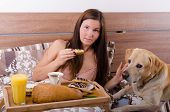 image of bed breakfast  - Beautiful young woman eating breakfast in bed in the morning complete breakfast  - JPG