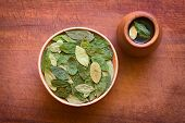 stock photo of mating  - Overhead shot of dried coca leaves in bowl with fresh coca tea  - JPG