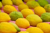 image of sukkot  - Etrog the yellow citron is on display at a four species market for the Jewish holiday of Sukkot - JPG