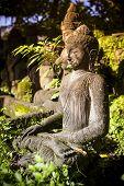 pic of stone sculpture  - Bali - JPG