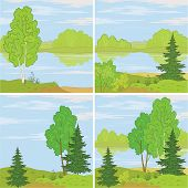 ������, ������: Set forest landscapes