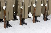 image of trooper  - Bulgarian troopers are standing in lines during a rehearsal - JPG